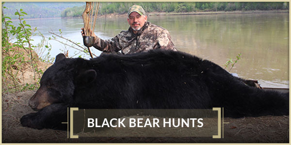 Interlake Safaris Hunts from the Heart Black Bear Hunts