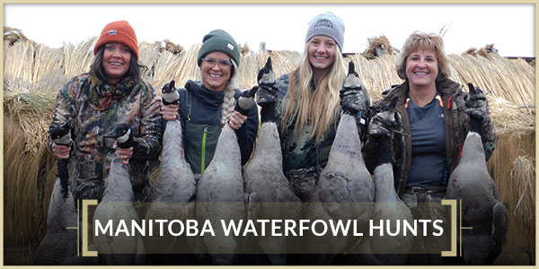 Interlake Safaris Hunts from the Heart Manitoba Waterfowl Hunts