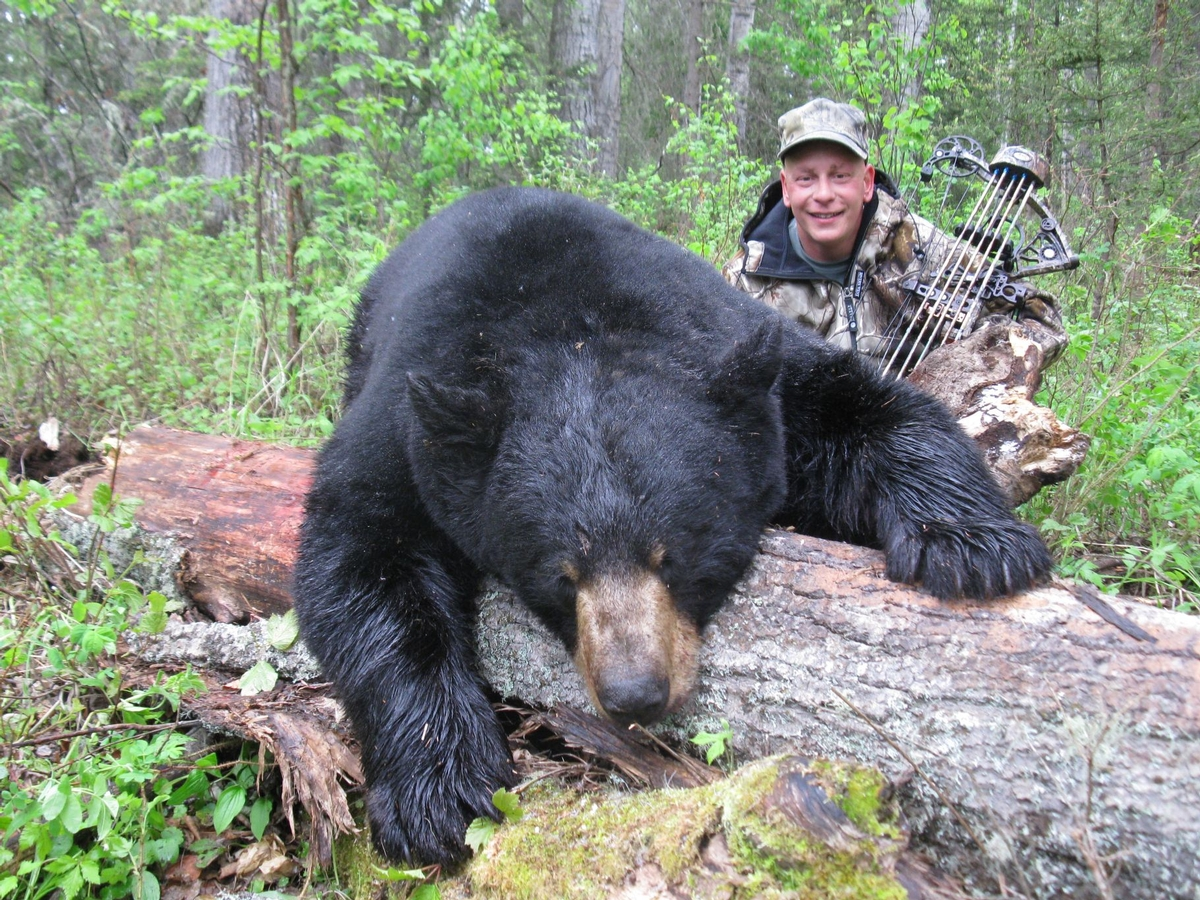 Alberta Black Bear Hunting Adventures (2)